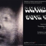 Solo Exhibition at Gallery Nine5